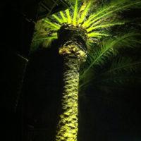 12v-18w-palm-lighting-200x200 Portfolio