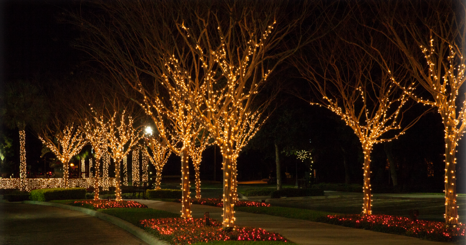 Commercial Outdoor Led Tree Lights Melbourne