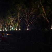 amora-hotel-spot-lights-200x200 Portfolio